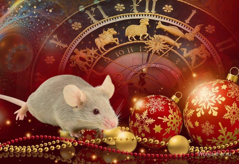 Приметы на Новый год Крысы