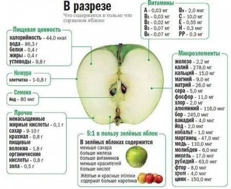 Яблучна дієта. Що таке яблучна дієта?