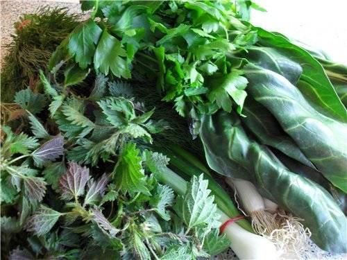 Зелений борщ. Як готувати зелений борщ. У статті розказано, які продукти потрібні для зеленого борщу і дано кілька доступних рецептів