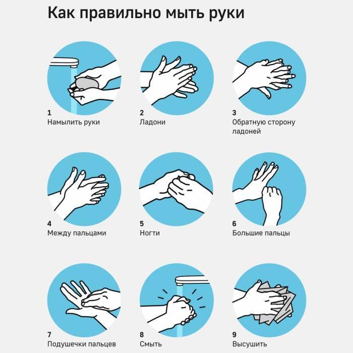 Частини тіла людини, які необхідно добре мити