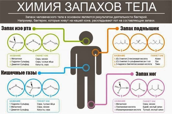 Чому від людини погано пахне