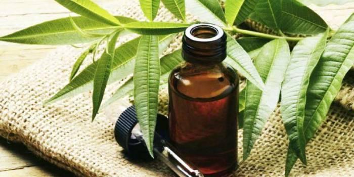 Ефективні природні засоби, що допомагають зняти свербіж від укусу комахи
