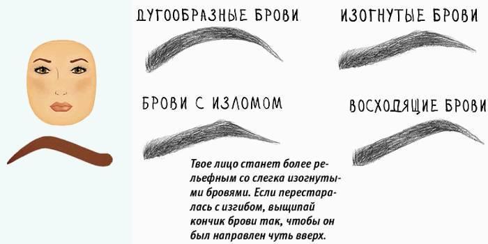 Правильні форми брів для круглого особи