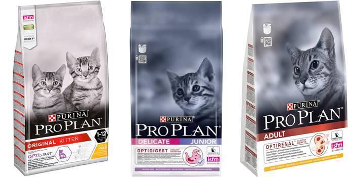 Рейтинг найпопулярніших сухих кормів для кішок і кошенят
