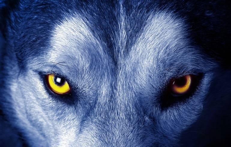 Сонник очі: основні значення дивитися в очі людей, бачити своє відображення в дзеркалі