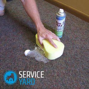 Як почистити килим в домашніх умовах від запаху сечі?